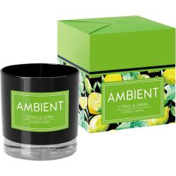 Bispol Ambient świeca zapachowa Citrus & Herbs