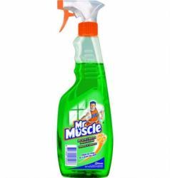 Mr Muscle płyn do szyb w sprayu 500ml zielony